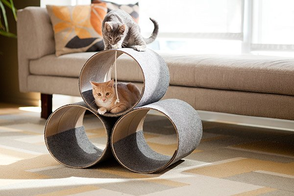 Do it yourself pet projects pet nanny diy kitty corner cat play house hey cat lovers this is one of my favorite pet projects from lowes and it costs less than 40 solutioingenieria Gallery